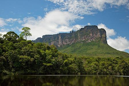 卡尼马国家公园图片