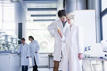 化学系学生在实验室观察试管图片