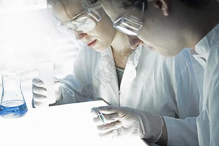 科学家在实验室检查试管图片