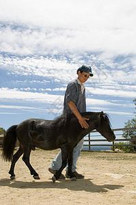 教练牵着微型马图片