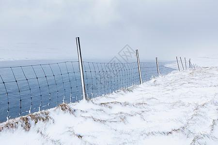 白雪皑皑的乡村景观中的栅栏图片