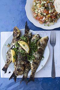 突尼斯杰尔巴盘中煮鱼图片