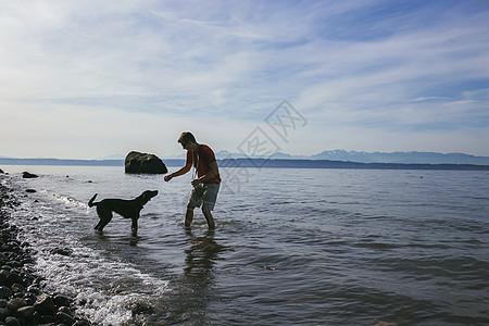在美国华盛顿州西雅图普吉湾海岸和他的狗玩耍的人图片