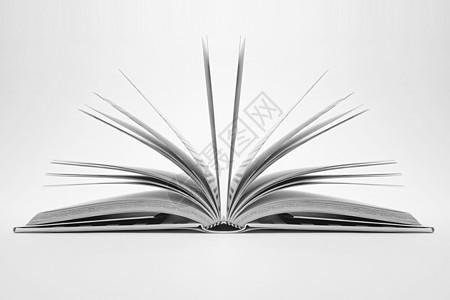 打开的书籍中的页面图片
