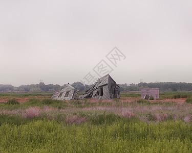 美国科罗拉多州废弃和毁坏的棚屋图片