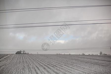 被雪覆盖的田野图片