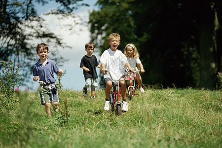 儿童一起在野外玩图片