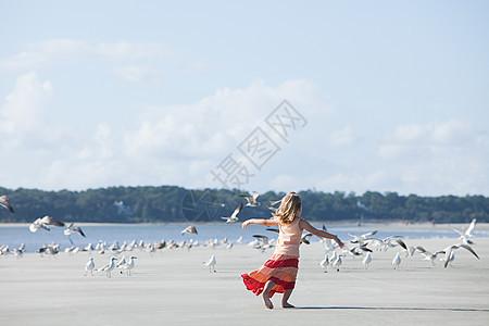 在海鸥中间的海滩上奔跑的女孩图片