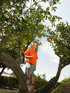 拿着橘子的小女孩图片