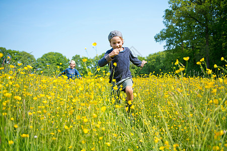 在花丛中奔跑的兄弟们图片
