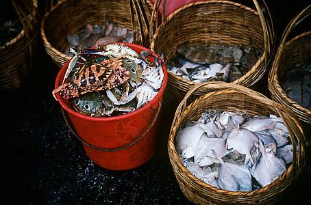 香港市场中的鱼图片