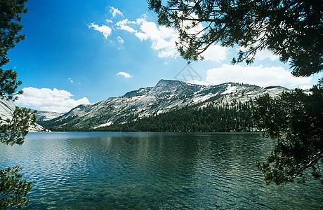 约塞米蒂T湖图片
