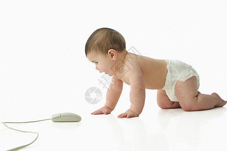 观察电脑鼠标的宝宝图片
