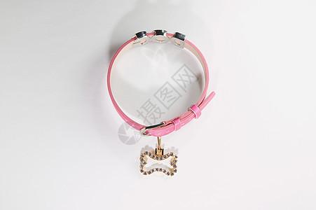 粉色狗领图片