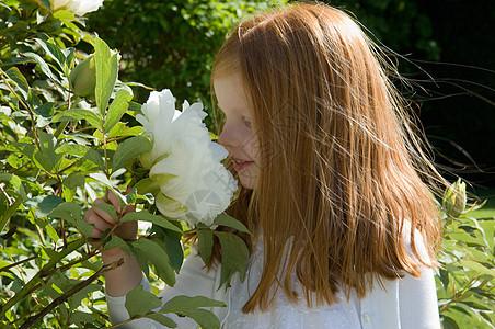 女孩在后院闻花香图片