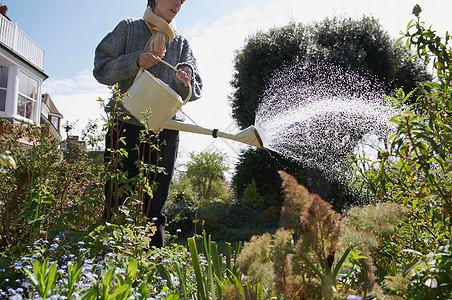 浇水的女人图片