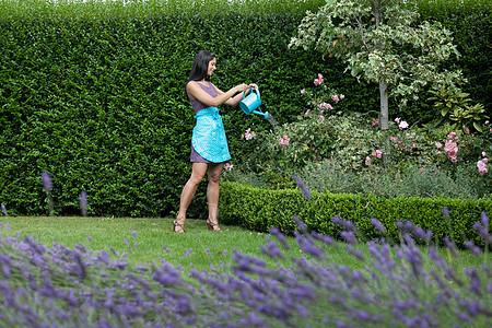 在后院浇花的女人图片