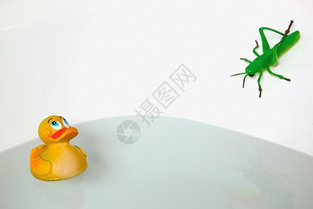 浴缸里的蚱蜢和橡皮鸭图片