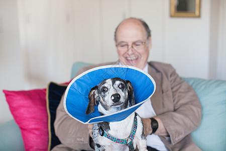 老人与狗在沙发上玩耍图片