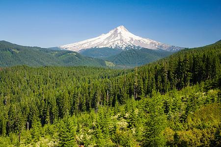 俄勒冈州的美景图片