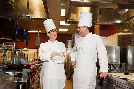 商业厨房厨师,肖像图片