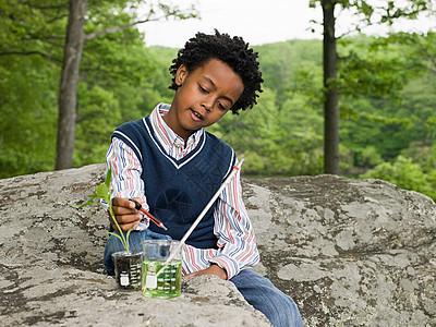 在植物上做实验的男孩图片
