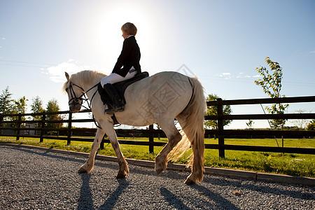 在阳光下骑马的男孩图片