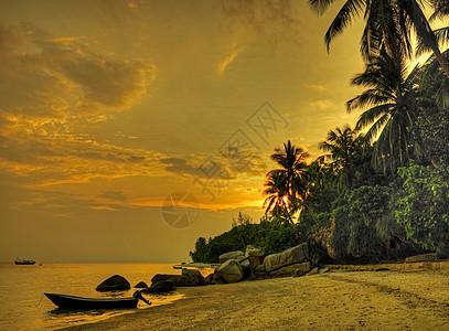马来西亚佩尔亨田群岛现场图片