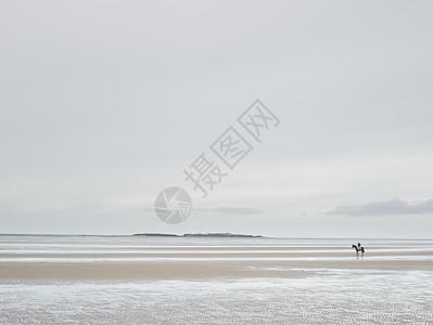 英国威拉空沙滩上赛马人的远视图图片