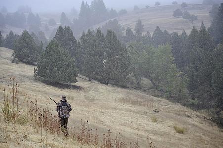 一个猎鹿人穿过田野图片