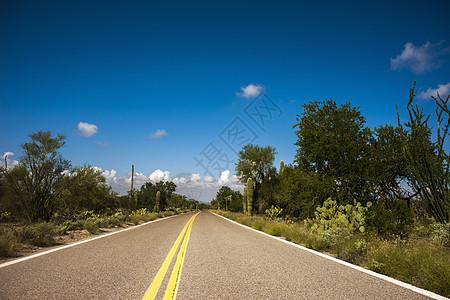 美国亚利桑那州图森市道路图片