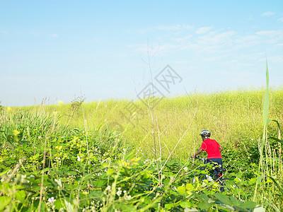 在花丛里骑自行车的男孩图片