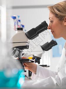 用显微镜观察标本图片