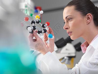 科学家检查分子模型图片
