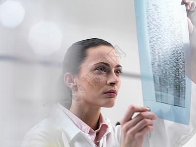 科学家检测DNA测序凝胶图片
