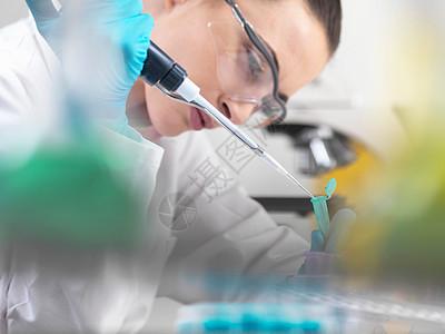 科学家用移液管输送DNA样本图片