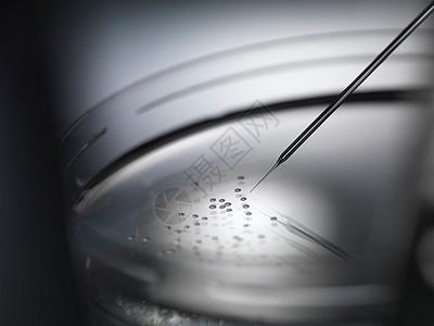 培养皿中的微量移液管和细胞图片
