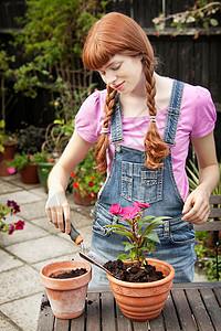 女人在花园里种植植物图片