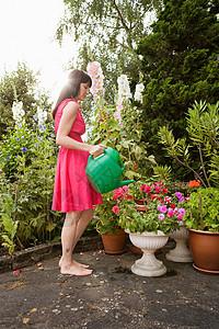 给植物浇水的女人图片