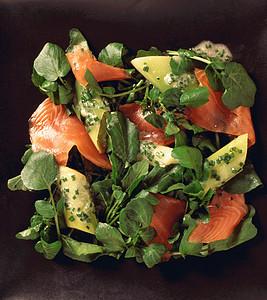 食物-西洋菜和鲑鱼沙拉图片