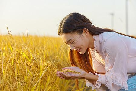 年轻美女手捧稻谷图片