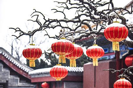 北京故宫红灯笼之雪图片