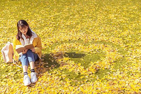 坐在铺满银杏叶的草坪上看书的女孩图片