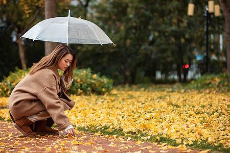 秋季雨天美女撑伞拾银杏叶图片