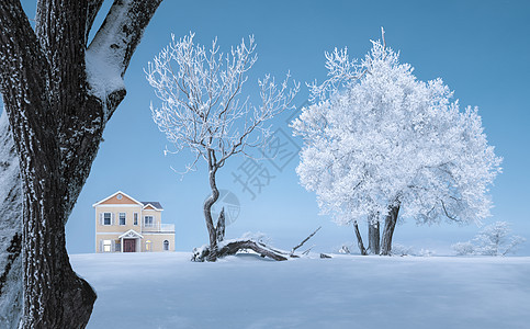 冰天雪地雾凇风光图片