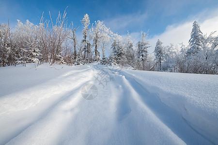 吉林长白山雪地车辙印图片