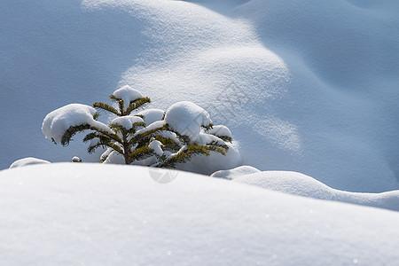 伊春库尔滨大平台村东北冰雪世界风光图片
