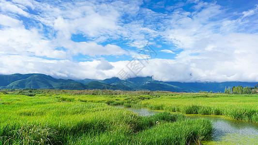 云南地区泸沽湖的草海图片
