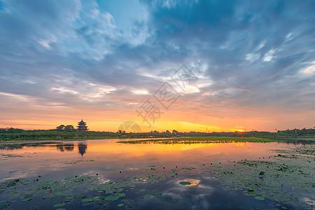 上海奉贤海湾森林公园日出图片