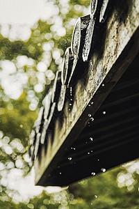 杭州灵隐寺春天下雨的寺庙屋檐图片